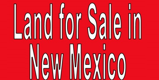 Buy Land in New Mexico. Search land listings in New Mexico. NM land for sale.