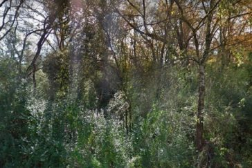 Piece of Land for Sale By Owner- Buy Piece of Land for Sale by Owner
