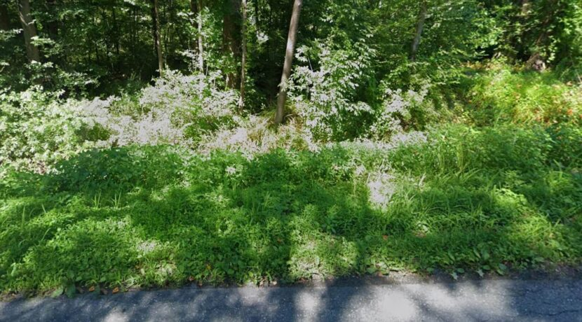 Cheap Land Deal Just North of Allentown, PA! Under $10K Just North of Allentown, PA Cheap Land