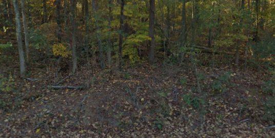 Alabama Land Less Than 5000- Buy and Sell Land Less Than 5000- Flip Land