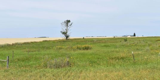 Ag Land- Agricultural Farm- Bring Animals- Agricultural Farm A
